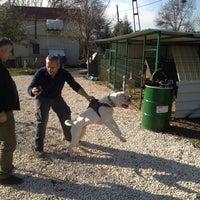 Photo taken at Istanbull's American Bulldog Club by Ümit Ö. on 12/15/2013