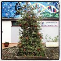 Photo taken at Laboratorio di Scienze Sperimentali by Matteo on 12/7/2012