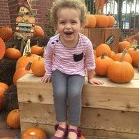 Photo taken at St. Martin's Pumpkin Patch by Katie P. on 10/20/2015