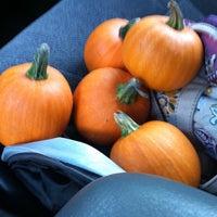 Photo taken at St. Martin's Pumpkin Patch by Katie P. on 9/30/2014