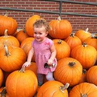 Photo taken at St. Martin's Pumpkin Patch by Katie P. on 10/10/2014