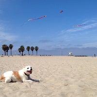 Foto tirada no(a) Ocean Beach por April em 6/2/2014