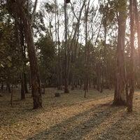 Foto tomada en Bosque de Tlalpan por Sorel D. el 5/30/2013