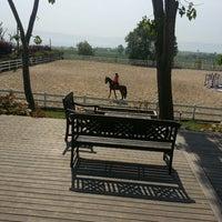 5/4/2013 tarihinde Songül K.ziyaretçi tarafından Gürman At Çiftliği'de çekilen fotoğraf