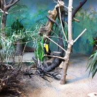 Foto tirada no(a) Miejski Ogród Zoologiczny por Gabriela H. em 6/1/2013