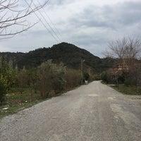 Photo taken at Çaylı by Melisa T. on 2/8/2017