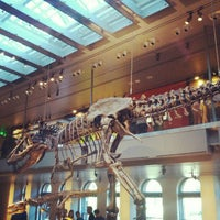 Photo taken at Dinosaur Hall by Alwyn L. on 11/23/2012