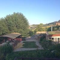 Photo taken at Fattoria Il Monte by Alessio A. on 8/16/2014