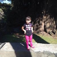 Foto tomada en El Ahuehuete por Olaya C. el 3/26/2015
