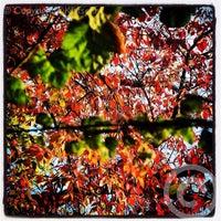 Photo taken at Amstelsluis by Boris K. on 10/19/2014