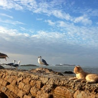 Photo taken at Port d'Essaouira by Nadia S. on 11/3/2012