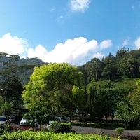 Photo taken at Kebun Teh, Gunung Mas by Daddy S. on 8/31/2013