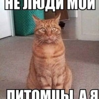 Photo taken at TrollingLab by Vladimir V. on 7/12/2013