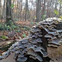 Photo taken at High Cliff State Park by Laith on 10/21/2012