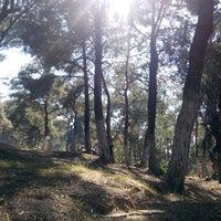 Photo taken at Teleferik Piknik Alanı by özgür e. on 5/24/2014