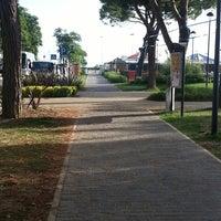 Foto scattata a Piadineria il capriccio di Gola da Camilla P. il 9/8/2013