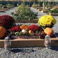 Photo taken at Xchange Community Garden by Rae L. on 10/26/2013
