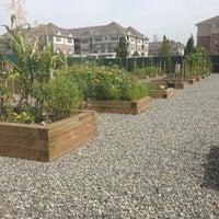 Photo taken at Xchange Community Garden by Rae L. on 9/9/2013