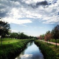 5/12/2013 tarihinde Gökhan B.ziyaretçi tarafından Soğanlı Botanik Parkı'de çekilen fotoğraf