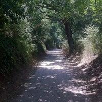 Photo taken at Via della Caffarella by Simone H. on 7/28/2013