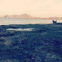 Photo taken at El Puentesito Al Mar by Bianca S. on 12/11/2013