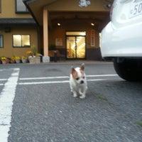 Photo taken at みやけ動物病院 by 世界のGORO on 4/16/2014