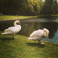 Foto tomada en Parc de Woluwepark por Giuseppe M. el 5/1/2013