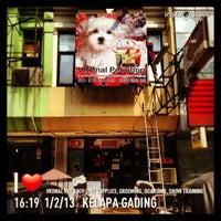 Photo taken at VRDnal Pet Shop - Kelapa Gading by Ferdinal C. on 1/2/2013