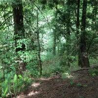 Foto tomada en Forest Park - Wildwood Trail por Jana G. el 6/27/2013