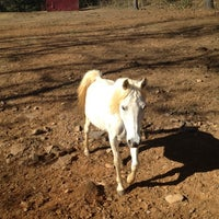Photo taken at Bent Tree Stables by Matthew C. on 11/17/2012