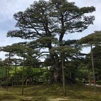 Photo taken at Neagarinomatsu Pine by psychicer on 5/3/2017