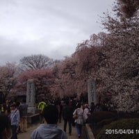 Photo taken at 実相寺 by psychicer on 4/4/2015