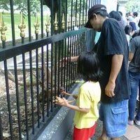 Photo taken at Bogor Palace by Rachel S. on 5/12/2013