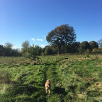 Photo taken at Bradlaugh Fields by Suzanne B. on 10/27/2017