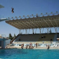 olympic swimming pool sport city