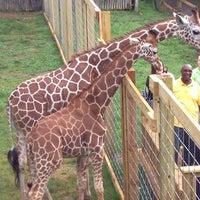 Photo taken at Elmwood Park Zoo by Kat B. on 5/23/2013