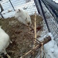 Photo taken at Jenness Farm LLC | Goat Milk Soaps by Michael S. on 1/6/2013