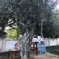 รูปภาพถ่ายที่ Çavuş'un Yeri โดย Arzu Yasin K. เมื่อ 7/22/2017