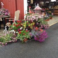 Photo taken at Detweiler's Farmers Market by Leslie C. on 5/24/2013