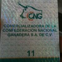 Das Foto wurde bei Rastro Ferrería von Carlos L. am 1/16/2013 aufgenommen