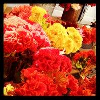 Photo taken at Downtown Berkeley Farmers Market by Tripp H. on 9/15/2012
