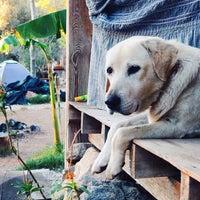 Photo taken at Shanti Garden by bora o. on 10/7/2013