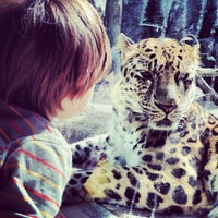 Photo taken at Minnesota Zoo by Jaime T. on 10/13/2013