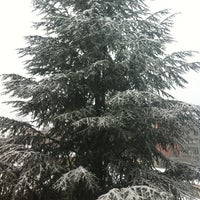 Photo taken at Mühlburg by Flo on 1/12/2013