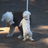 Photo taken at Cunningham Park Dog Run by Michael C. on 9/12/2014
