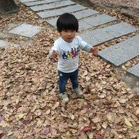 4/14/2018にDaisuke S.が江坂公園で撮った写真