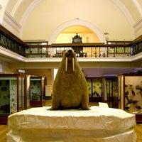 Photo prise au Horniman Museum and Gardens par Horniman Museum and Gardens le9/4/2013