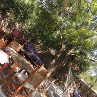 Foto scattata a Noni's House da Pınar Y. il 9/9/2017