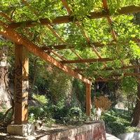 Foto tomada en Jardin Japones Cerro Santa Lucía por Fernando O. el 3/1/2015