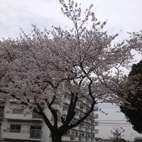 Photo taken at 大谷戸公園 by Shinsuke K. on 3/23/2013